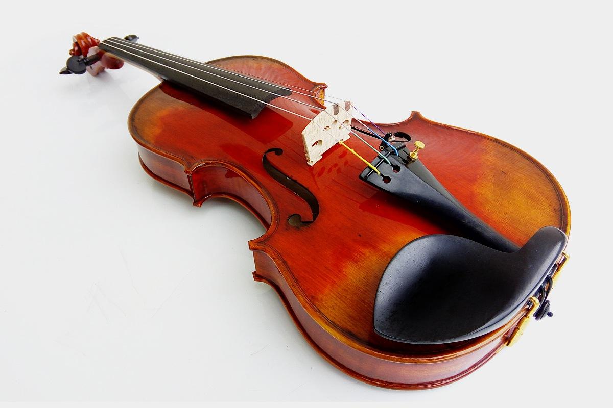 Violon Saurier