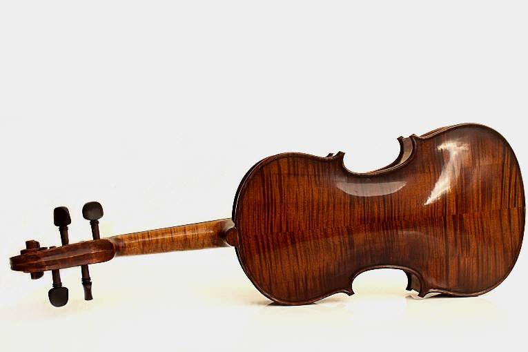 Violon Odon
