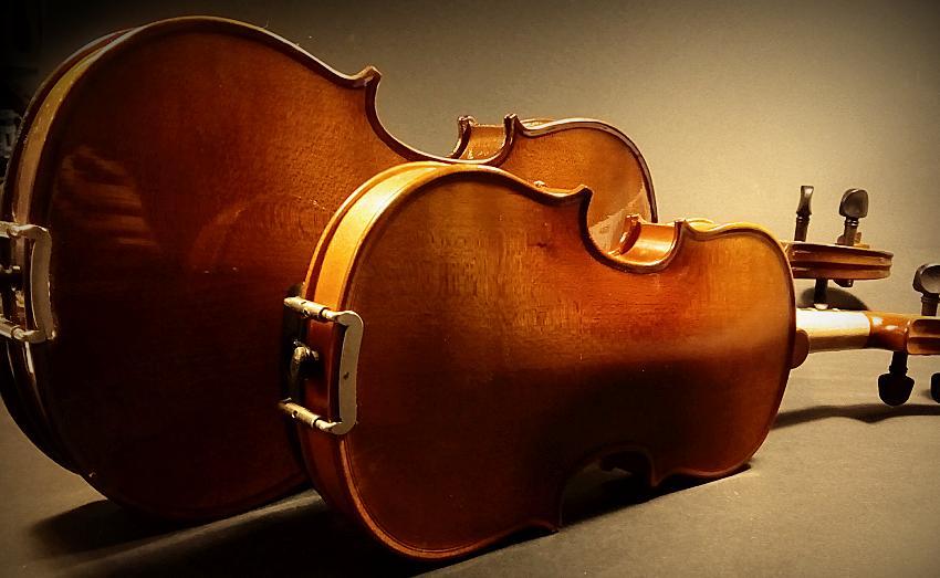Les taille de violon