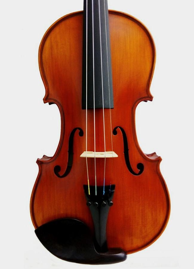 Violon acoustique