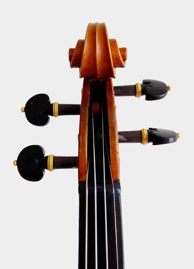 Violon Maestro
