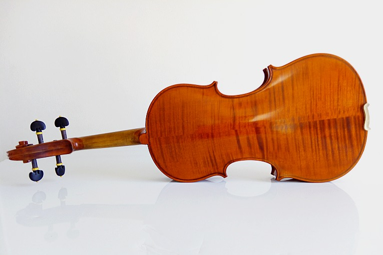 Violon Mont Saint Romain